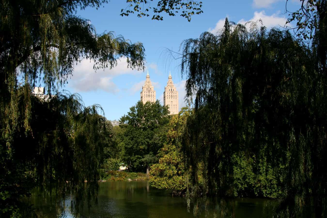 New York Central Park mit Blick auf Twin Tower